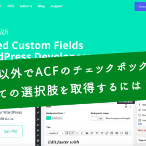 投稿以外でAdvanced Custom Fieldsのフィールドの値を取得する