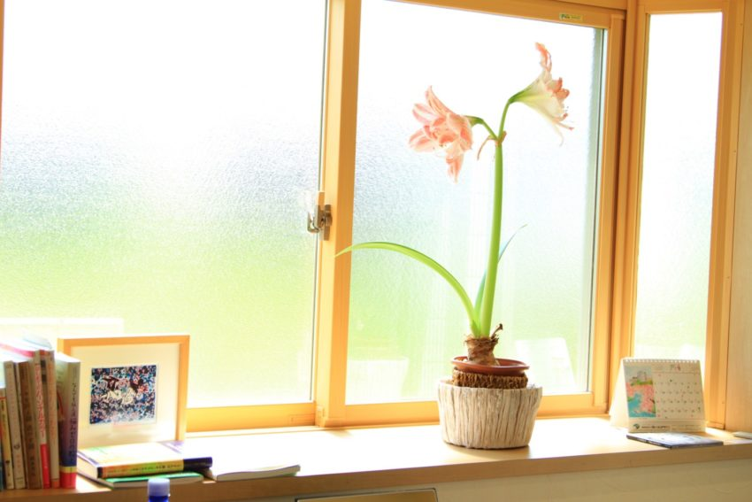 image-福井 スピメイクと撮影会 メイクセラピールーム~oluolu(オルオル)の庭~ | WordPressを使ったホームページヒーリングソリューションズ